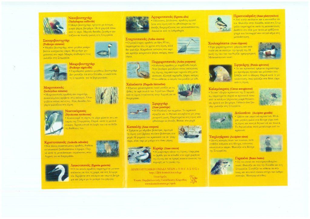 Τα πουλιά της Στυμφαλίας. 2000